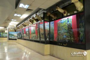 موزه بوستان جنگلی پردیسان