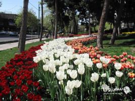 پارک شریعتی تهران