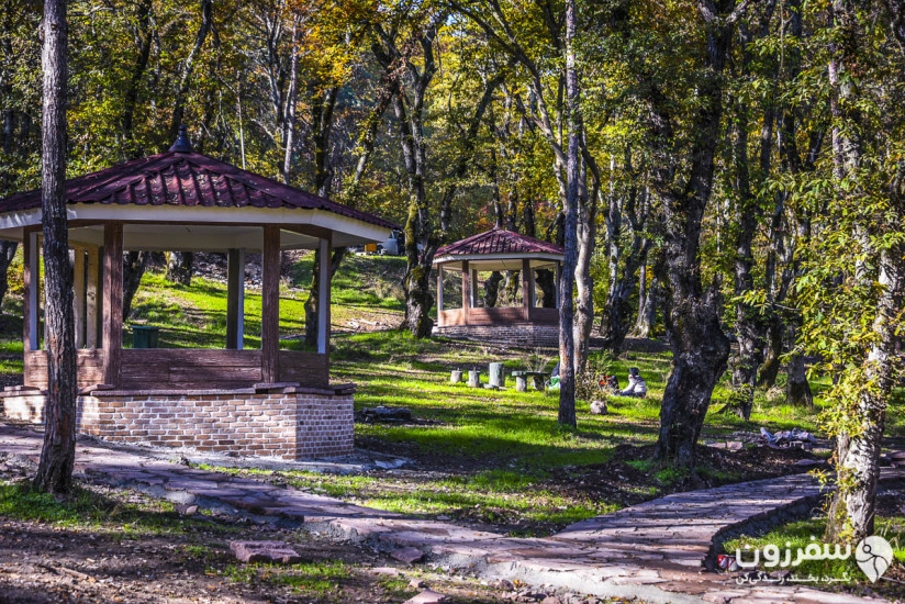 پارک جنگلی شهید زارع