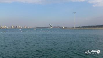 دریاچه خلیجفارس