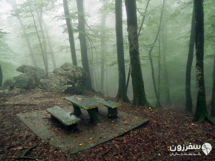 پارک جنگلی نمکآبرود