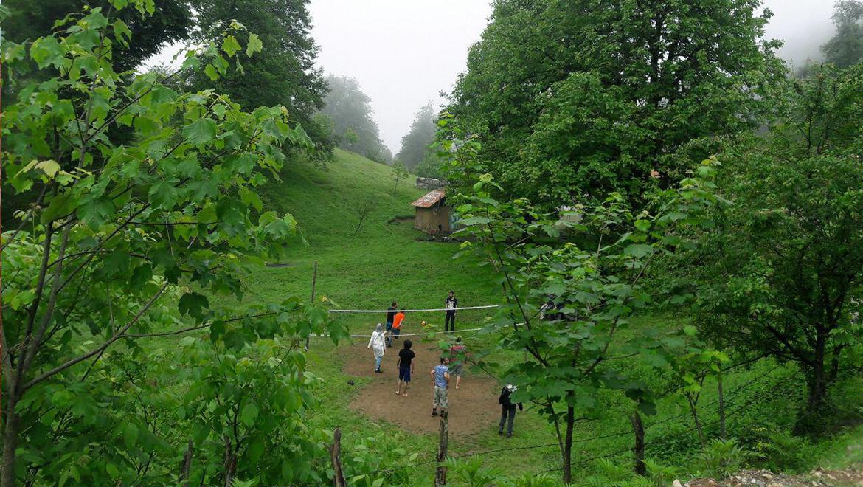 آغوزحال ؛ در همسایگی جنگل دو هزار