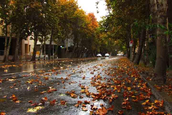 زیبایی خیابان ولیعصر در فصل پاییز