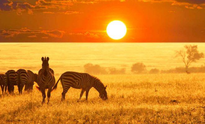 جاهای دیدنی آفریقا
