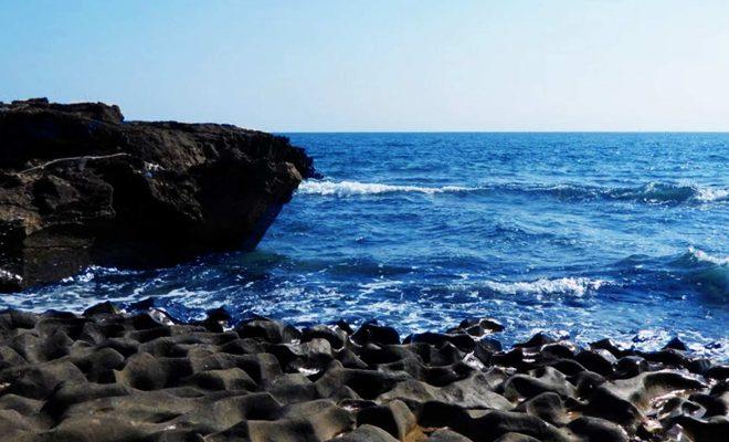 جزیره لارک - شاخص