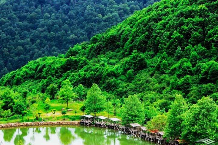محیط آرام و لذتبخش دریاچه قو