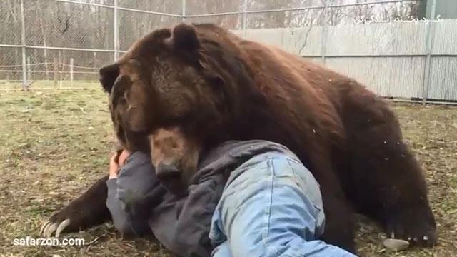 دوستی با حیات وحش