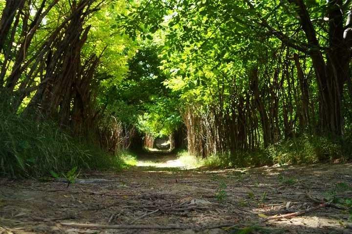روستا بانقلان جایی بررای لمس سادگی و آرامش