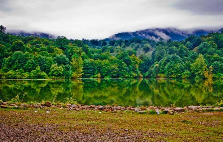 پارک جنگلی شورآب از قدیمیترین پارکهای طبیعی