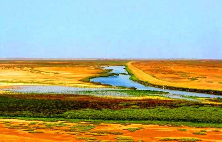 تالاب صوفیکم از جاهای دیدنی بندر ترکمن که نقش مهمی در زیستگاه پرندگان این منطقه بازی می کند