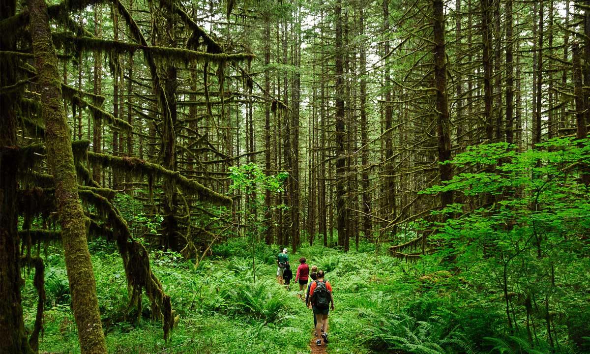نکات تازه برای تازه کارهای سفر ؛ این قسمت طبیعت گردی