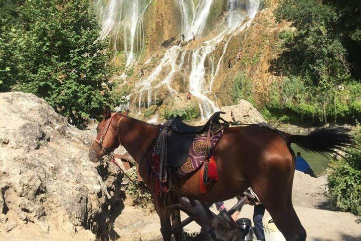 آبشار-بیشه۴