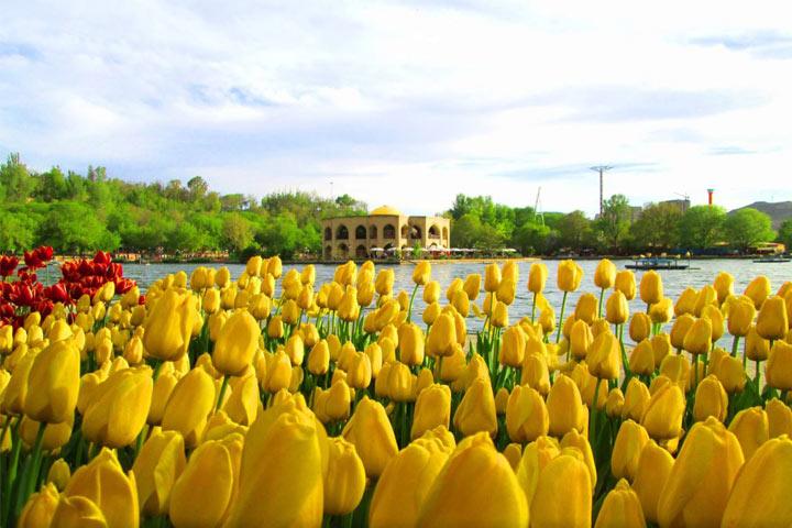 باغ ائل گلی