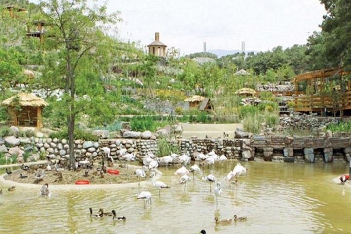 باغ پرندگان | مراکز تفریحی تهران