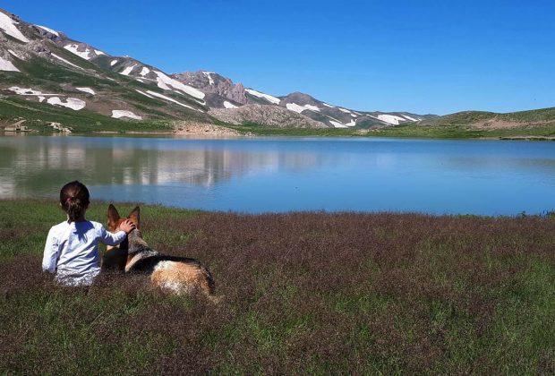 دریاچه دالامپر