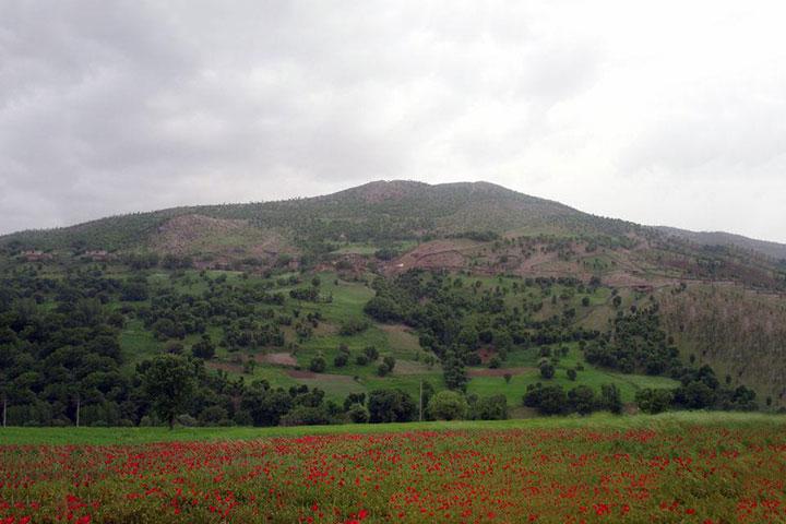 روستای نجنه