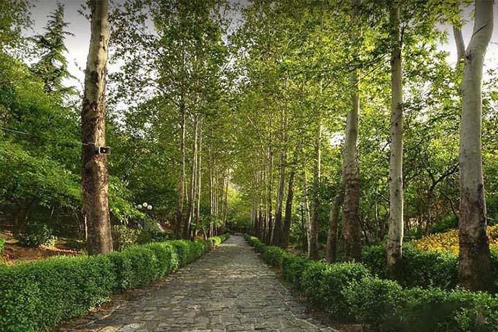پارک جمشیدیه | جاهای تفریحی تهران