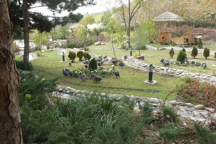 پارک جنگلی لویزان تهران