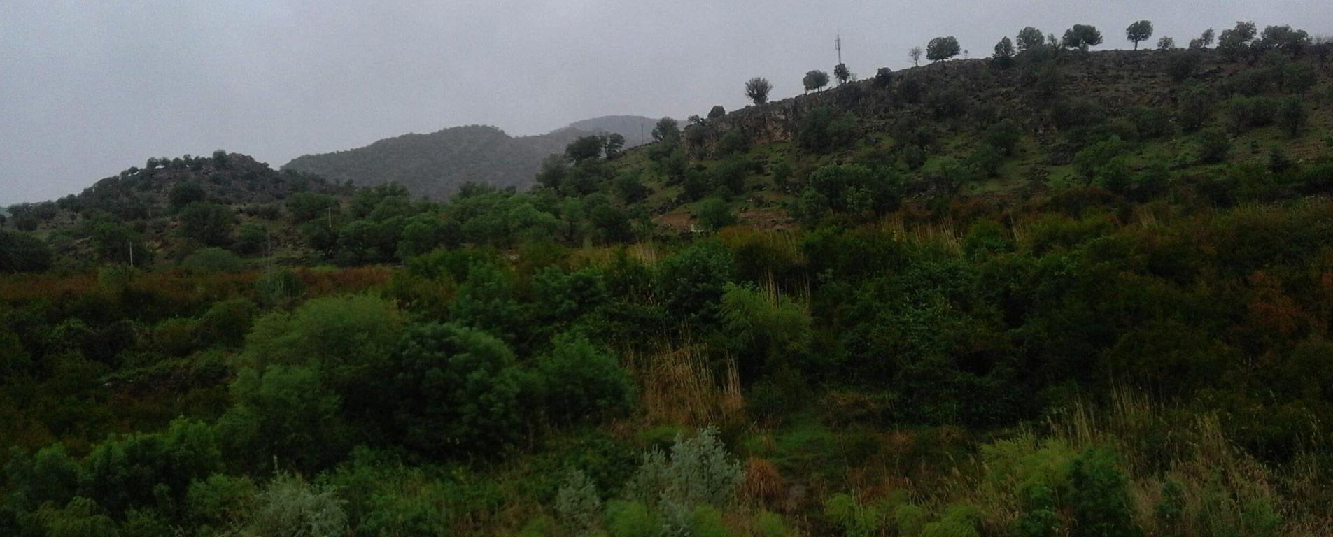 تنگ دم اسب ، آبشار تماشایی استان فارس