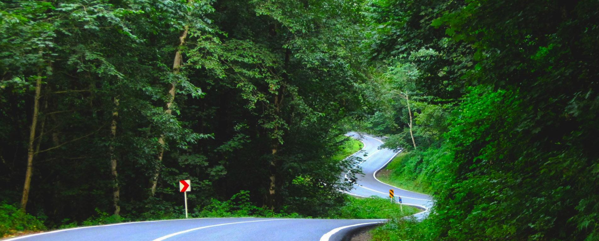 جاده چالوس ؛ دوستداشتنیترین جاده ایران