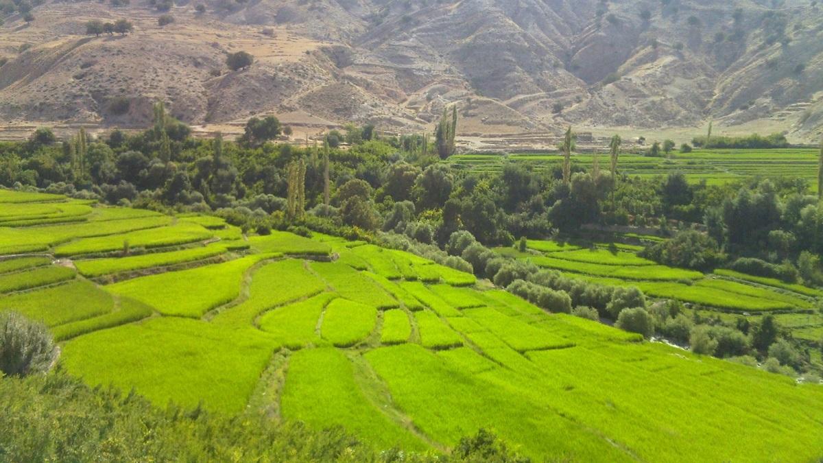 باغملک خوزستان ، از دل منجنیق و داستان نمرود