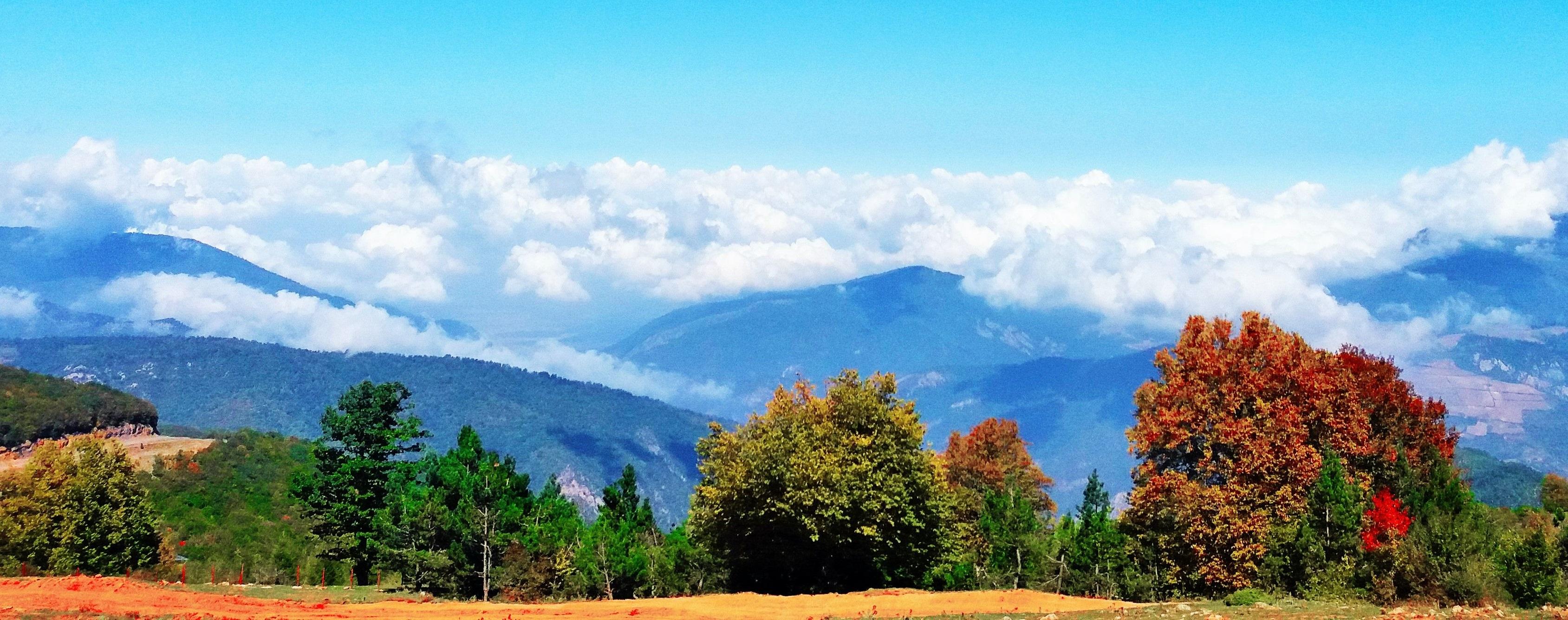 جنگل ابر ، شاعرانهای در دل شاهرود