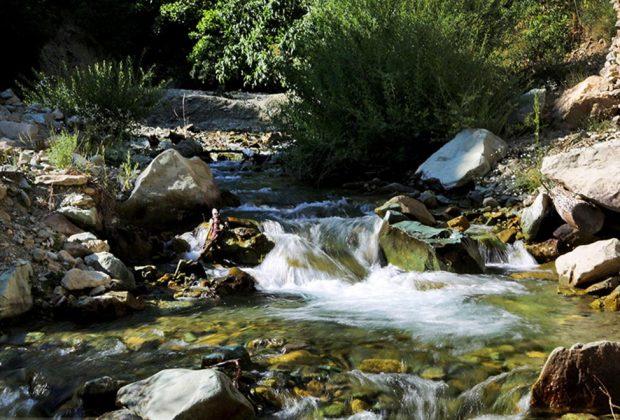 کاور روستای آهار
