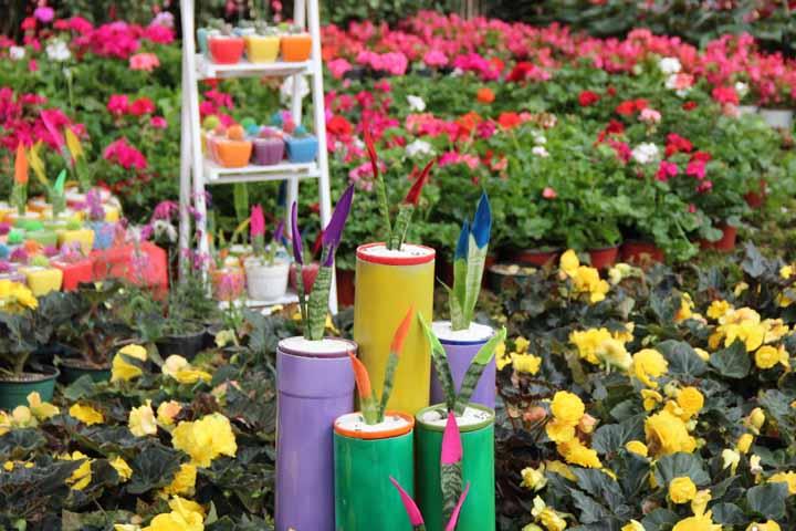 باغ گلها | مراکز تفریحی کرمانشاه