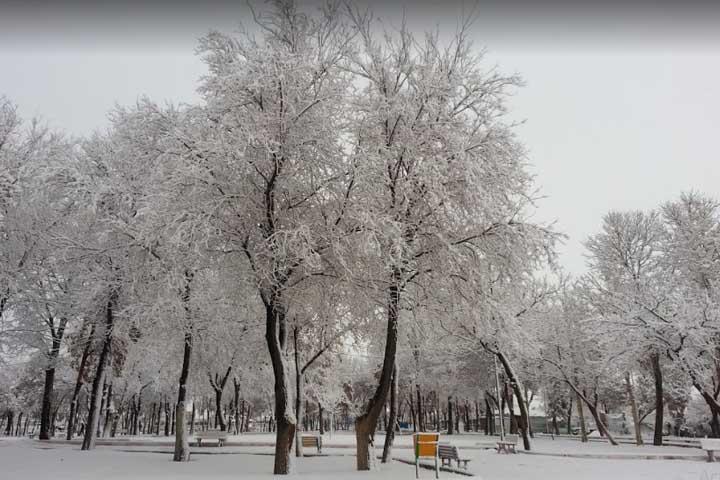 پارک رجایی | مراکز تفریحی زنجان