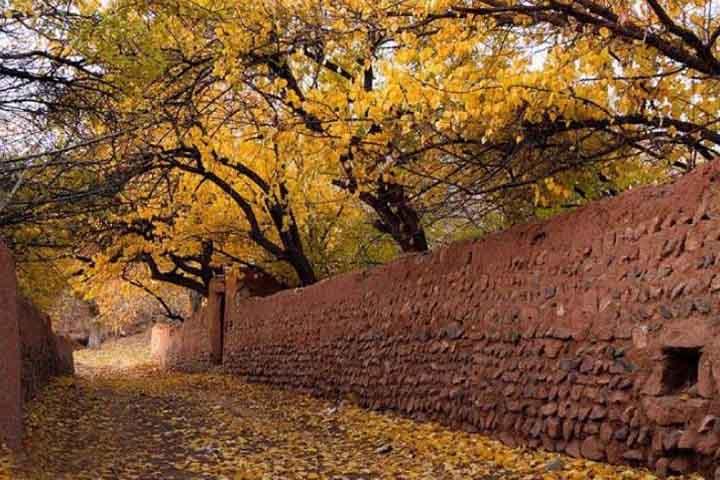 کوچه باغ روستای آهار