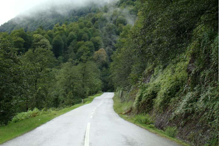 جاده جنگلی سیاهکل دیلمان