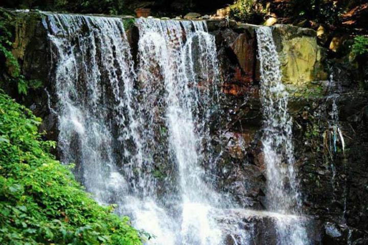 جنگل سیاهکل و آبشار لونک