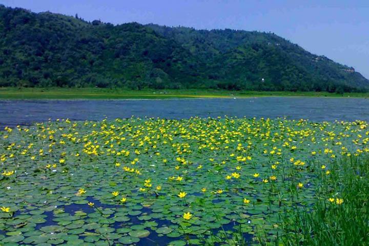 دریاچه کومله | جاهای دیدنی گیلان