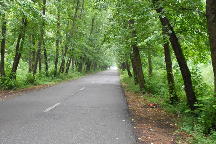 روستا و پارک جنگلی صفرابسته | جاهای دیدنی گیلان