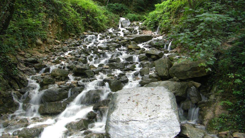 آبشار آب پری ، عروسی باوقار و پرنشاط در دل جنگل باشکوه رویان