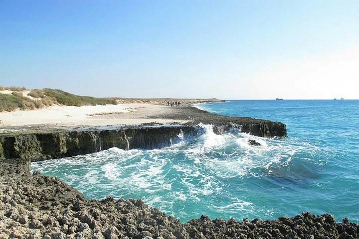 جزیره مارو هرمزگان