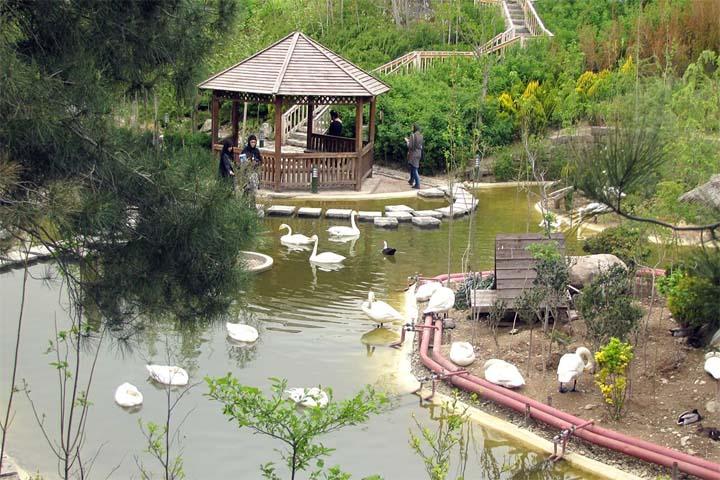 باغ پرندگان تهران   از جاهای دیدنی تهران