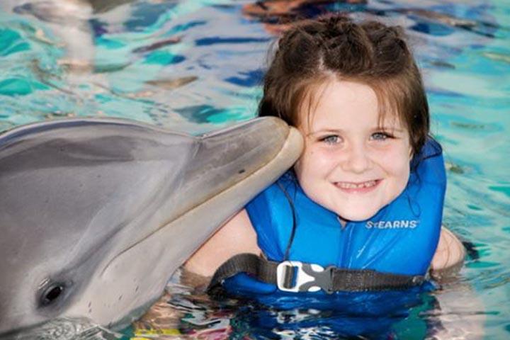 پارک آبی کلاب دلفینپ