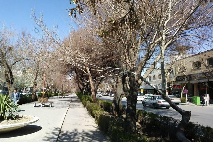 لذت قدم زدن در خیابان چهار باغ عباسی