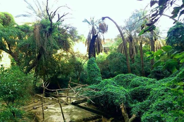بهترین فصل سفر به باغ خان شوشتر