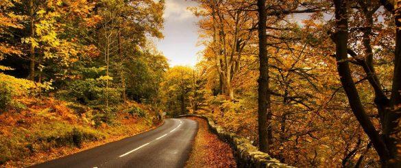 مقاصد سفر داخلی در پاییز