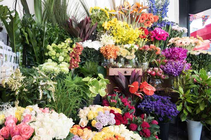 گل فروشی آیریس | بهترین گل فروشی های تهران