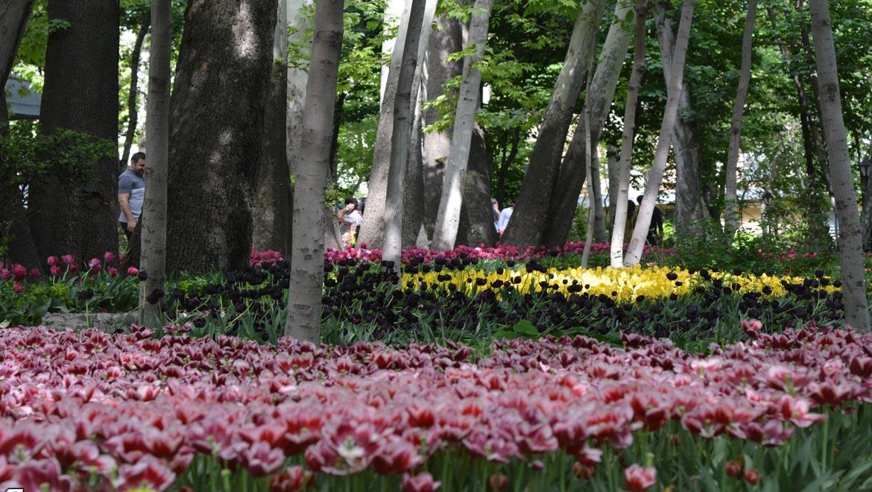 باغ ایرانی ؛ بهشتی در ده ونک