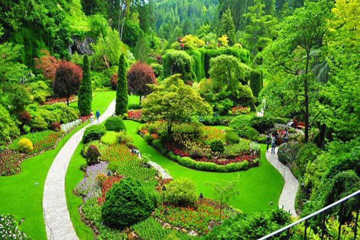 باغ اروپایی | باغ گیاه شناسی تهران