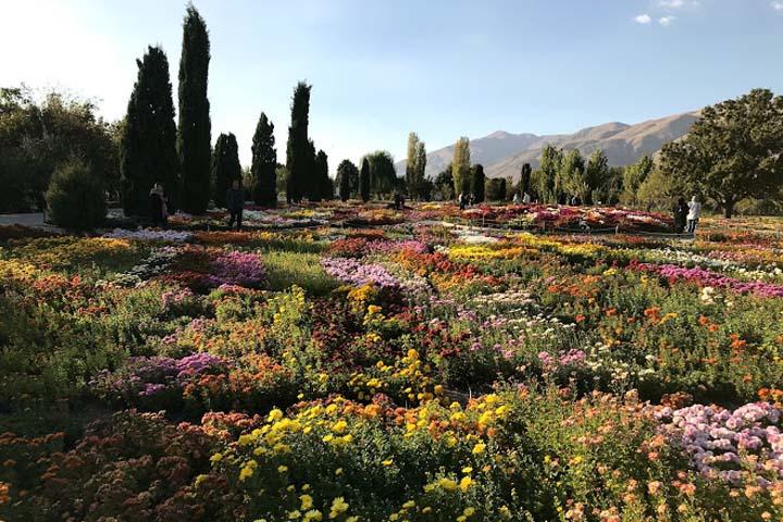 اقلیم ایرانی_تورانی | باغ گیاه شناسی تهران