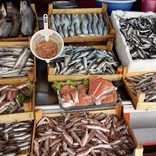 بازار ماهی خلیج فارس