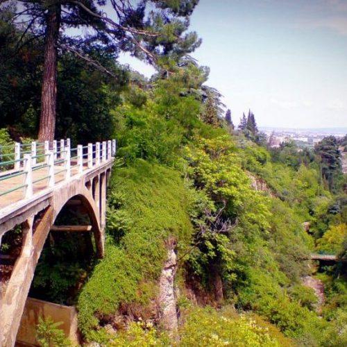 باغ ملی گیاهشناسی گرجستان
